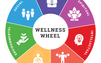What is Wellness & Theory?